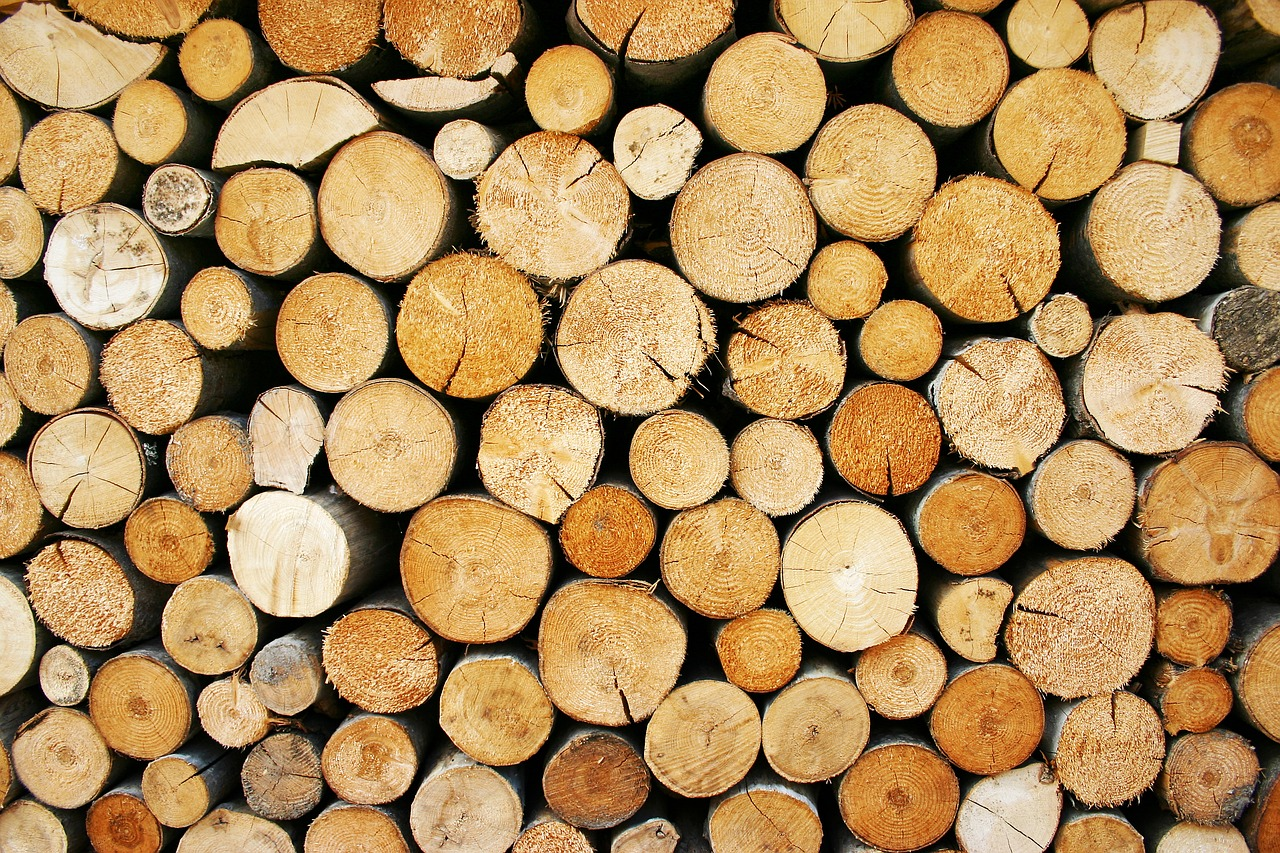 Logging and log rotate with ExpressJS and NodeJS - Filip Jelic